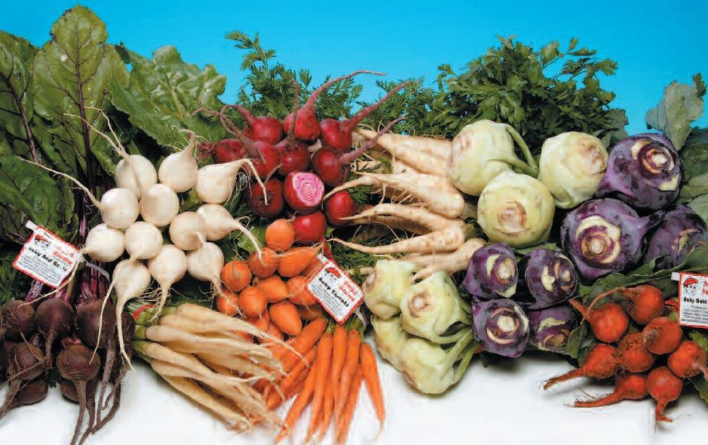 edible tubers vegetables - 1007×634