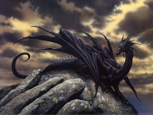 BlackDrgaon