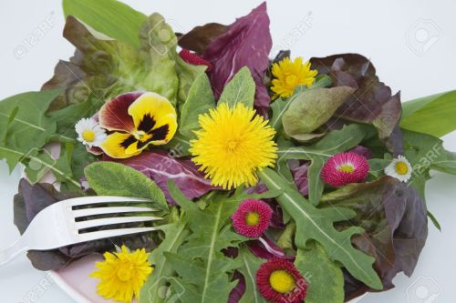 Summer salad with edible flowers