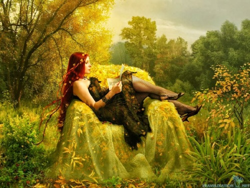 fairy-reading-book-autumn-colors-wallpapers-1024x768