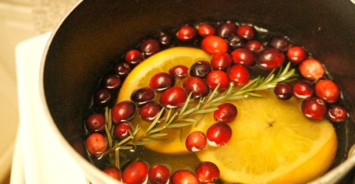 simmering-cranberry-orange-stove-top-potpourri