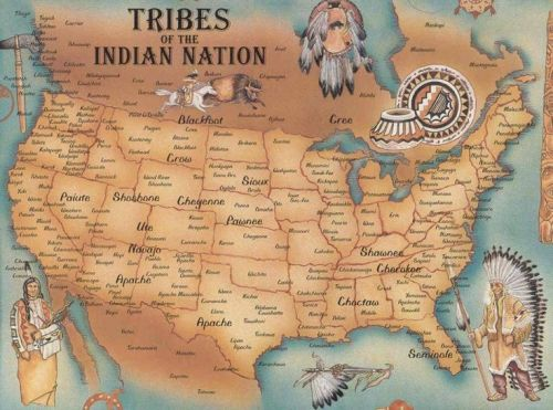 8c3a482fbfd9314b3d4b5c1032452ccc--native-american-tribes-indian-tribes