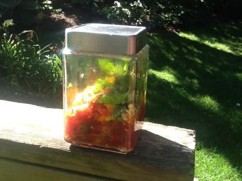 Sunshine Tomatoes and Basil -- No Need to Turn on the Stove