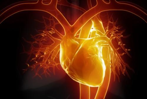 heart-e1434991196876
