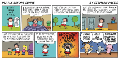 12/13/20 Pearls Before Swine comic strip